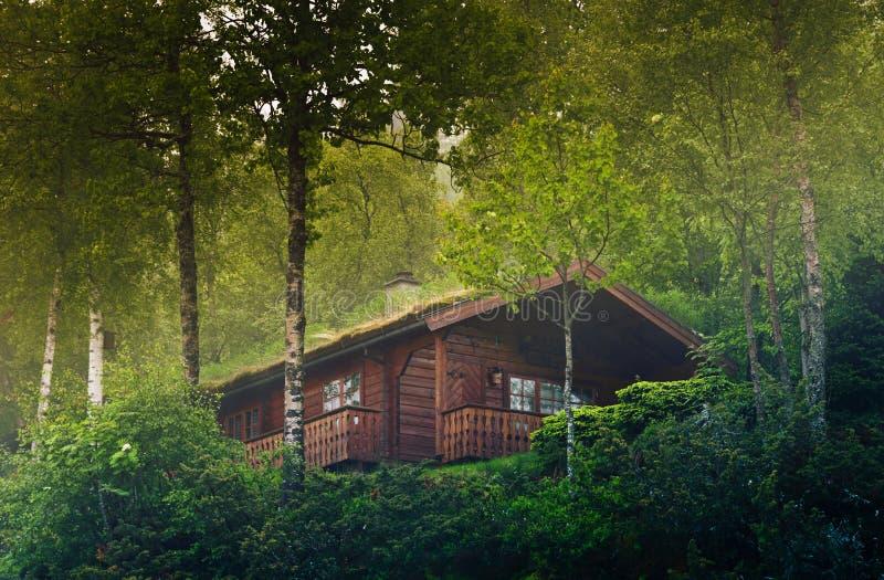 Camera nella foresta della Norvegia immagine stock libera da diritti