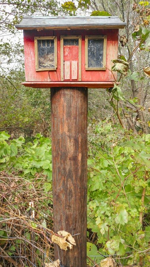 Camera rossa rustica dell'uccello sulla posta di legno immagini stock