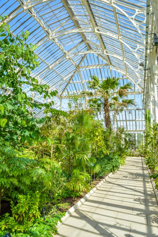 Camera temperata, giardini botanici reali di Kew, Londra, Regno Unito immagini stock libere da diritti