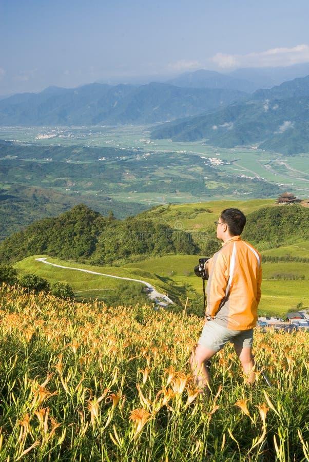 Cameraman op het landbouwbedrijf van de tijgerlelie royalty-vrije stock afbeelding
