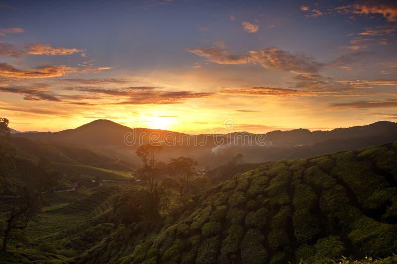 cameron średniogórzy wschód słońca obrazy stock