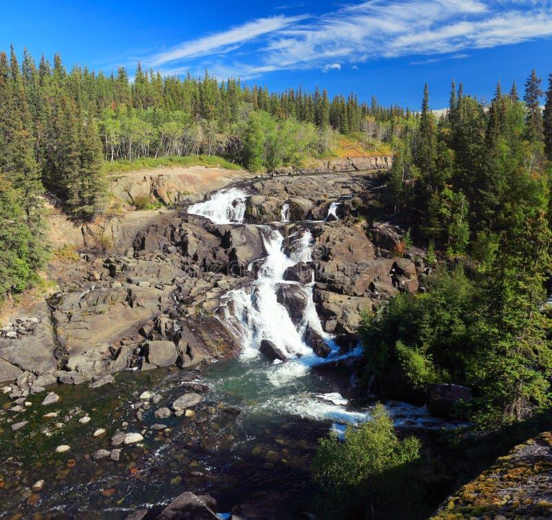 Cameron Falls den territoriella dolde sjön parkerar, Northwest Territories, Kanada royaltyfri fotografi