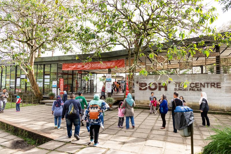 CAMERON HIGHLANDS, MALAYSIA, APRIL 6, 2019: Tourist making their way to BOH Sungai Palas Tea center, popular tourism spot at. Cameron Highland with scenic view stock photos