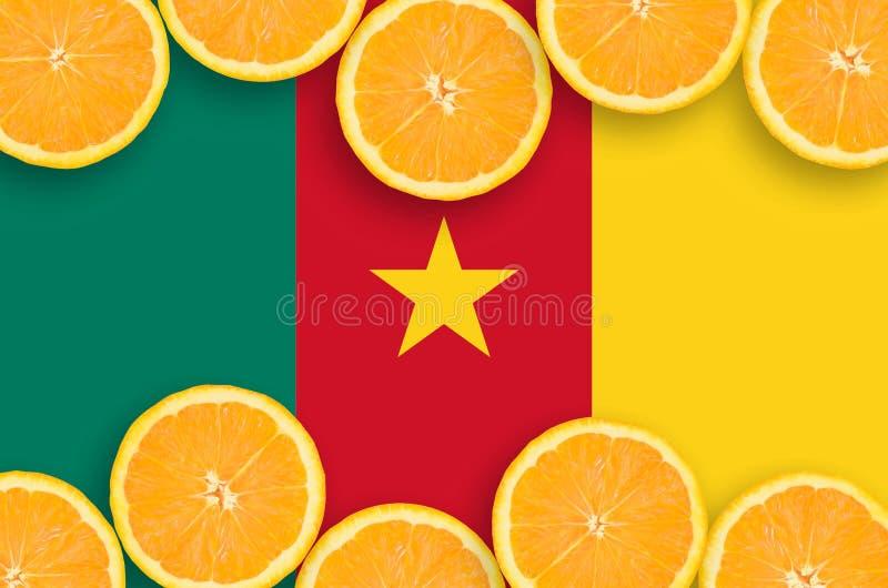 Cameroon flaga w cytrus owoc pokrajać horyzontalną ramę fotografia stock