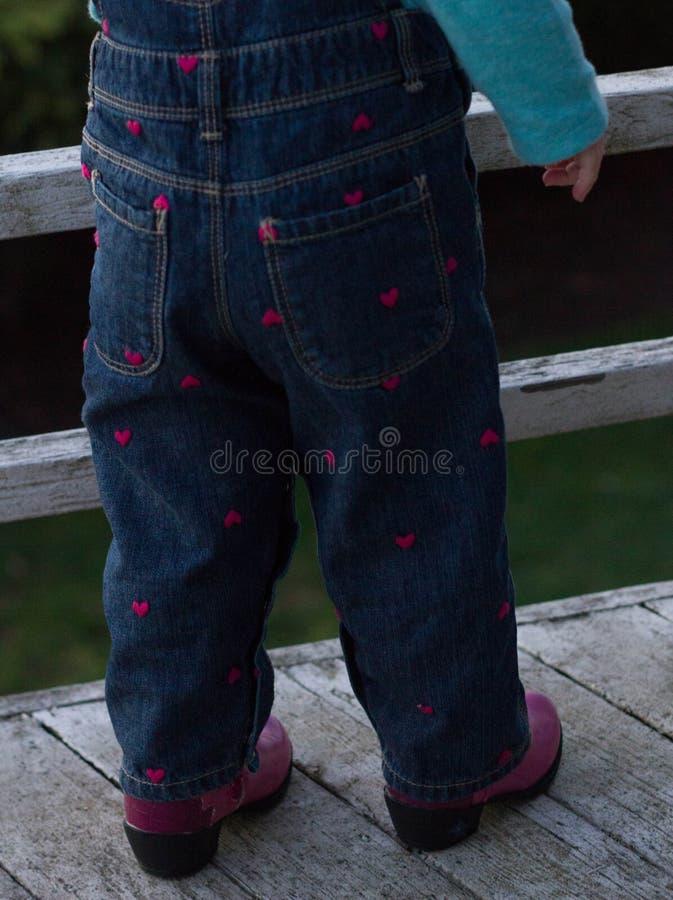 Camici del cuore e stivali di cowboy rosa fotografie stock libere da diritti