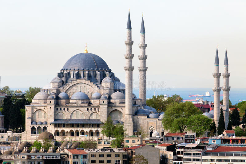 camii中心ista清真寺suleymaniye 免版税库存图片