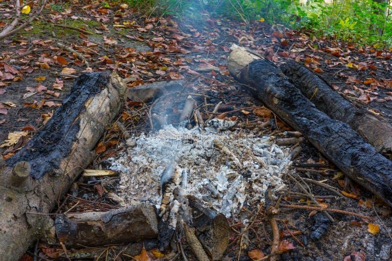 Caminando el fuego coloque el Bbq en bosque con el pequeños fuego y ceniza imagen de archivo