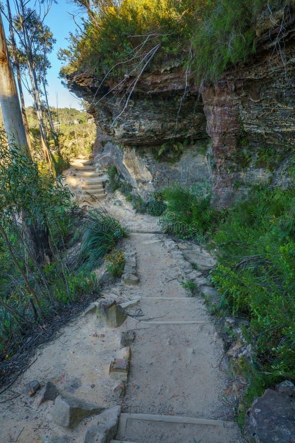Caminando el paseo del acantilado del Henrio del príncipe, montañas azules parque nacional, Australia 2 foto de archivo