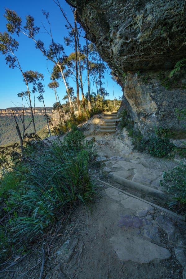 Caminando el paseo del acantilado del Henrio del príncipe, montañas azules parque nacional, Australia 3 foto de archivo