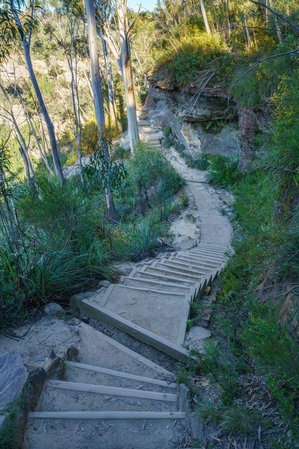 Caminando el paseo del acantilado del Henrio del príncipe, montañas azules parque nacional, Australia 1 foto de archivo libre de regalías