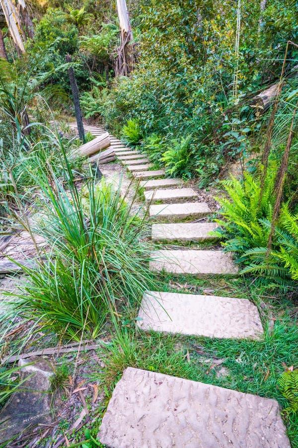 Caminando el paseo del acantilado del Henrio del príncipe, montañas azules parque nacional, Australia 4 foto de archivo libre de regalías