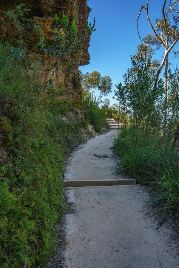 Caminando el paseo del acantilado del Henrio del príncipe, montañas azules parque nacional, Australia 12 fotografía de archivo libre de regalías