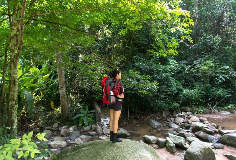 Caminante asiático de la mujer que se coloca en rastro del bosque con la cascada y que mira lejos Hembra con la mochila en alza e imagen de archivo