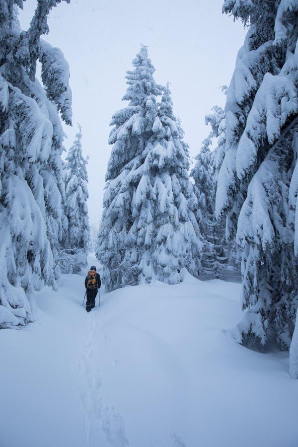 Caminante de Backcountry que empuja a través de la niebla en una cuesta nevosa Esquí que viaja en condiciones del invierno crudo  fotos de archivo libres de regalías