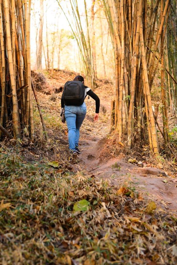 Caminante de Waman que va al top de la montaña fotografía de archivo