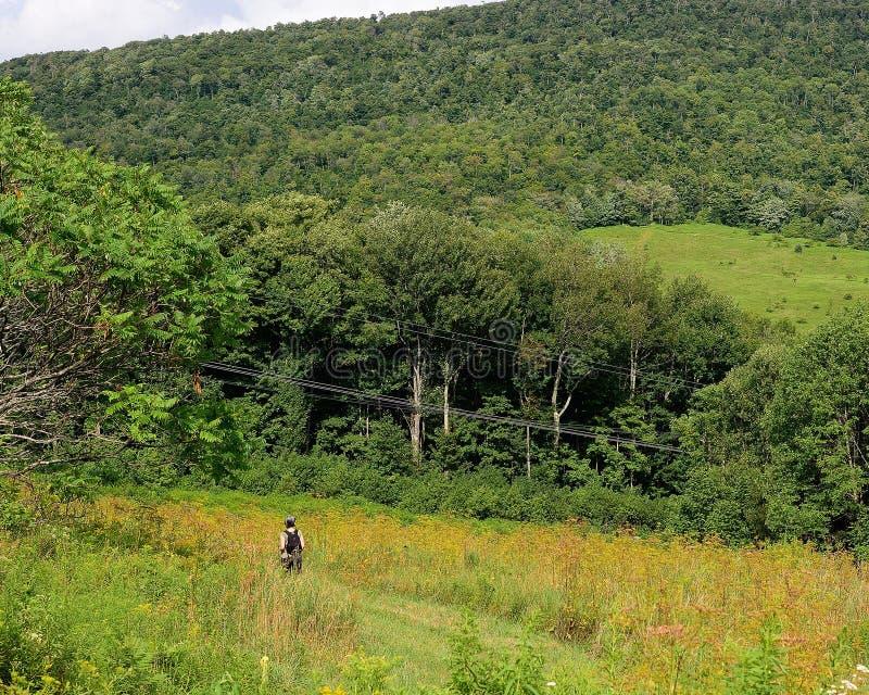 Caminante del verano de la montaña de Catskill fotografía de archivo libre de regalías