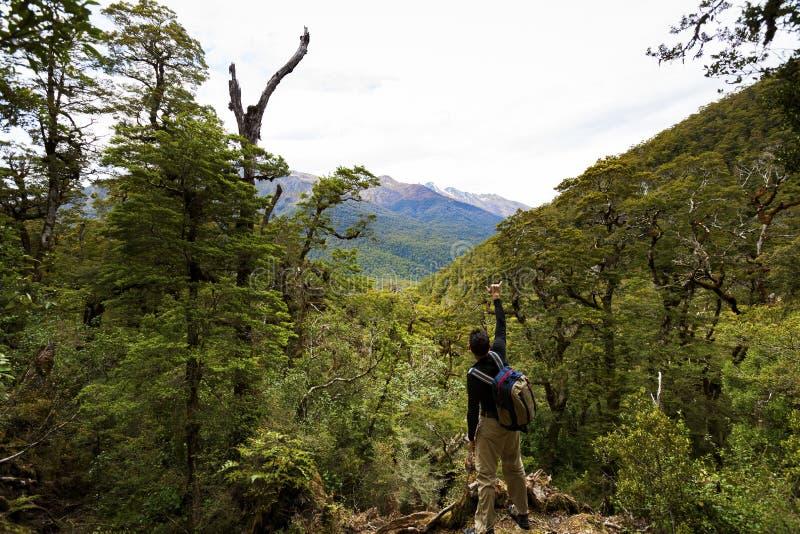 Caminante en el parque nacional de aspiración Nueva Zelanda del soporte fotografía de archivo libre de regalías