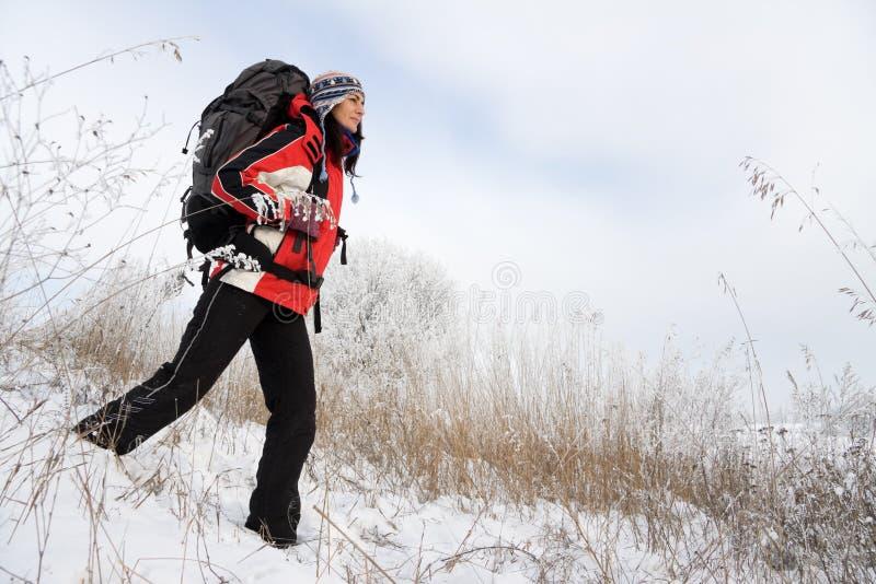 Caminante En La Nieve Fotografía de archivo