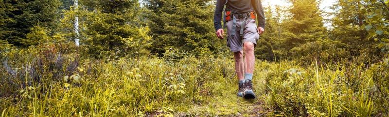 Caminante en las montañas foto de archivo