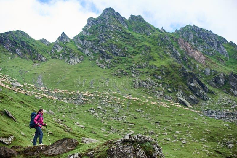 Caminante femenino en las montañas de Rumania imagen de archivo