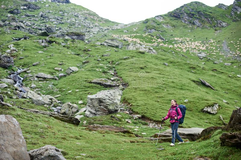 Caminante femenino en las montañas de Rumania fotografía de archivo