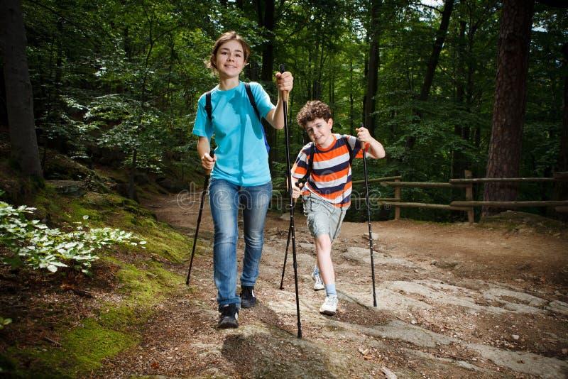 Caminante nórdicos fotografía de archivo libre de regalías