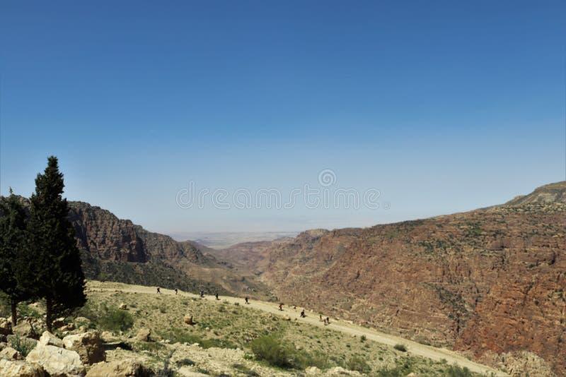 Caminante que entra abajo en el desierto imagen de archivo