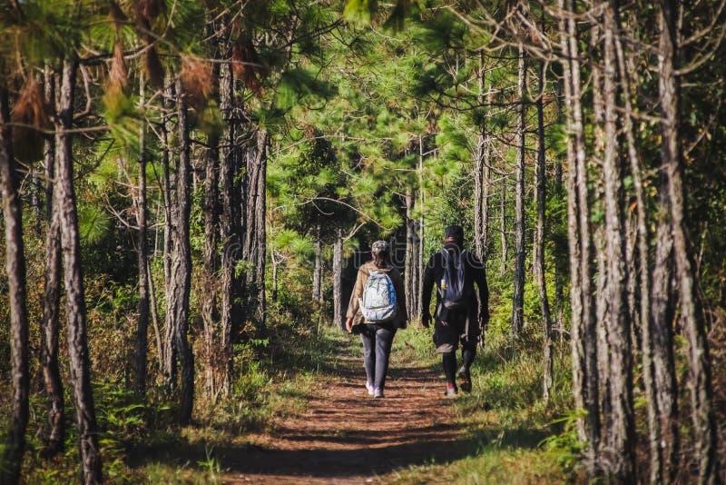 Caminantes con las mochilas que caminan la trayectoria de bosque del canal foto de archivo libre de regalías
