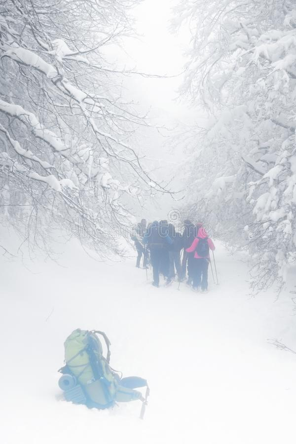 Caminantes del grupo que caminan en el rastro nevado y de niebla fotografía de archivo libre de regalías