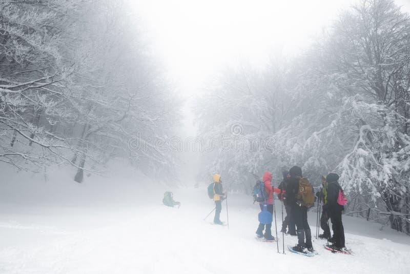 Caminantes del grupo que caminan en el rastro nevado y de niebla imagen de archivo