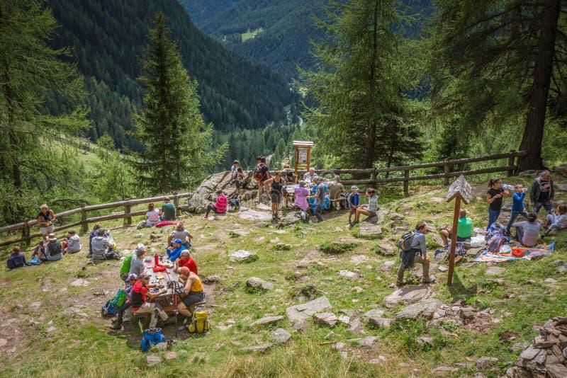 Caminantes en el prado en la montaña Valle del rabino, Trentino Alto Adige, Italia imagenes de archivo