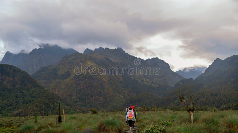 Caminantes en las montañas de Rwenzori imagenes de archivo