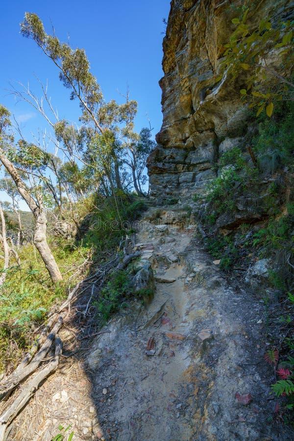 Caminar el paseo del acantilado del Henrio del príncipe, montañas azules, Australia 7 fotos de archivo libres de regalías