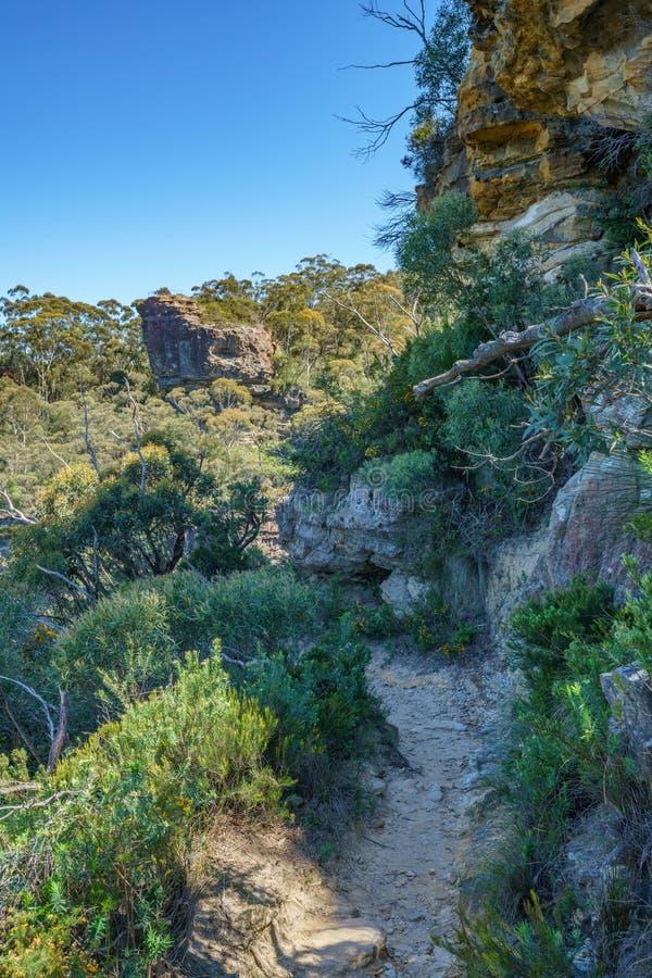 Caminar el paseo del acantilado del Henrio del príncipe, montañas azules, Australia 4 fotos de archivo libres de regalías