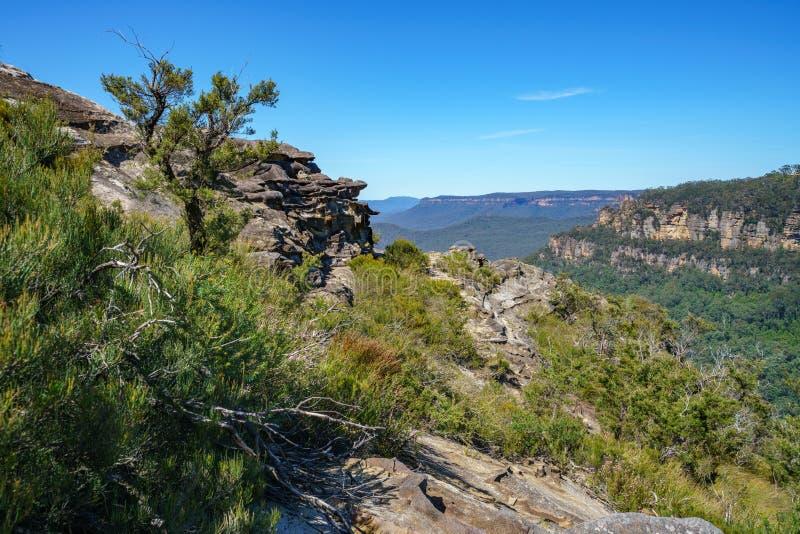 Caminar el paseo del acantilado del Henrio del príncipe, montañas azules, Australia 2 foto de archivo