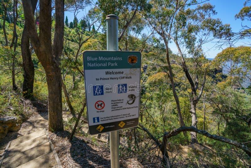 Caminar el paseo del acantilado del Henrio del príncipe, montañas azules, Australia 9 imagen de archivo libre de regalías