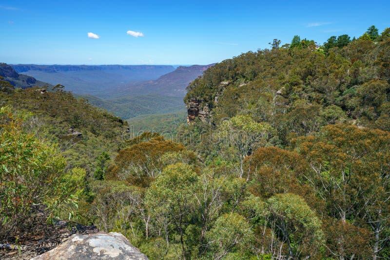 Caminar el paseo del acantilado del Henrio del príncipe, montañas azules, Australia 46 imágenes de archivo libres de regalías