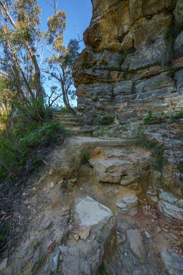 Caminar el paseo del acantilado del Henrio del príncipe, montañas azules, Australia 8 imagen de archivo libre de regalías