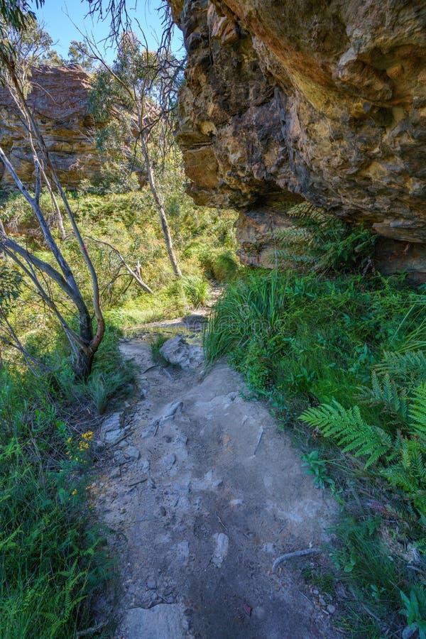 Caminar el paseo del acantilado del Henrio del príncipe, montañas azules, Australia 5 imágenes de archivo libres de regalías