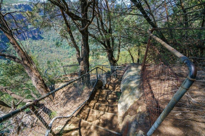Caminar el paseo del acantilado del Henrio del príncipe, montañas azules, Australia 51 fotos de archivo libres de regalías
