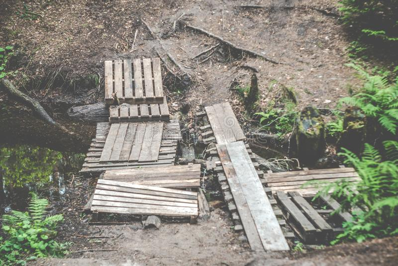 Caminar el puente en bosque fotos de archivo libres de regalías