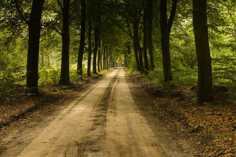 Caminar el rastro GR5 en el Benelux imagen de archivo libre de regalías