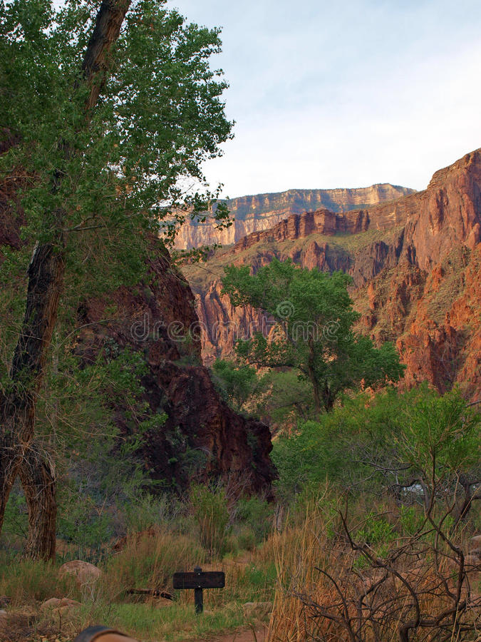 Caminar Grand Canyon fotos de archivo libres de regalías