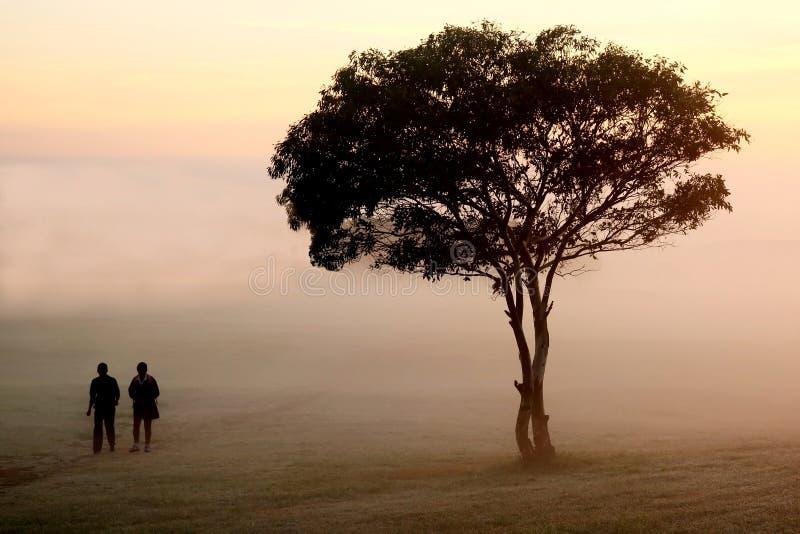 Caminata brumosa de la mañana fotografía de archivo libre de regalías