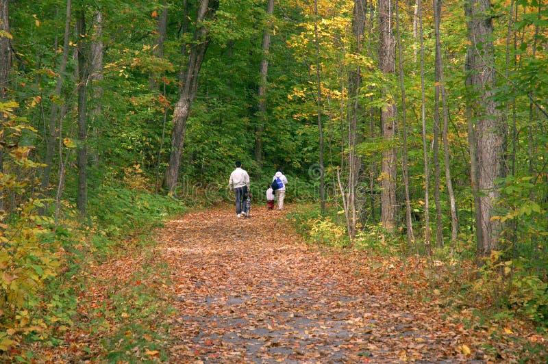 Caminata de la familia en maderas del otoño fotografía de archivo libre de regalías