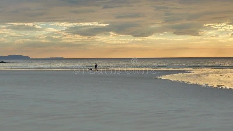 Caminata de la playa de la tarde con el perro foto de archivo