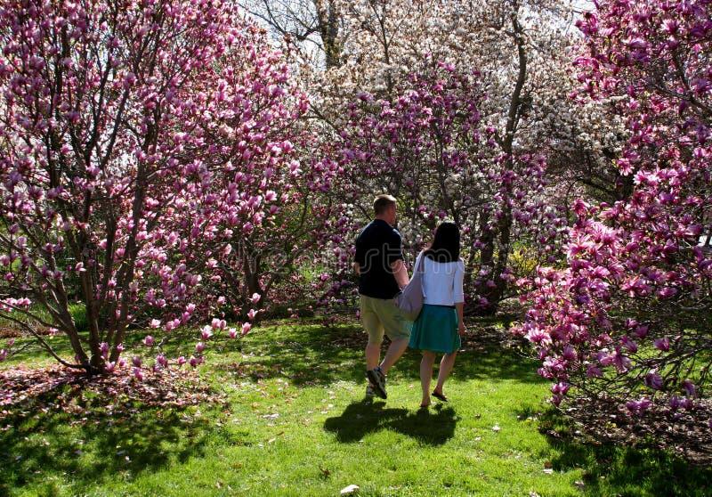 Caminata de la primavera imágenes de archivo libres de regalías