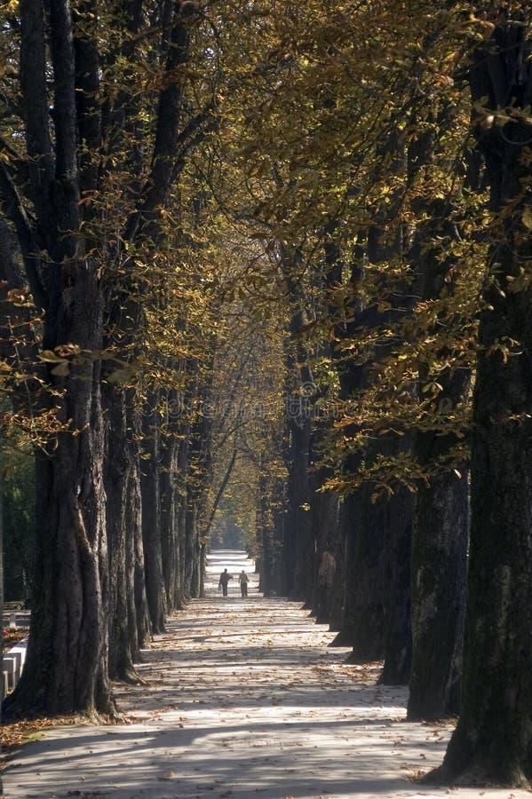 Caminata de la 'promenade' foto de archivo libre de regalías