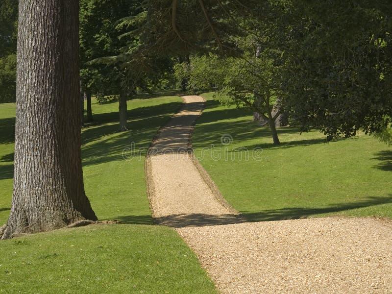 Download Caminata del campo imagen de archivo. Imagen de relaxing - 188065