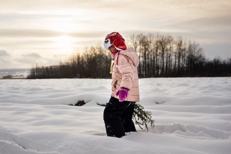 Caminata del invierno fotografía de archivo